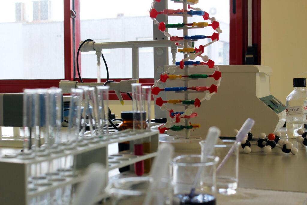 Laboratorio di Scienze Liceo Michelangelo